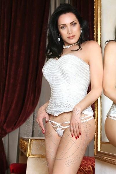 Reina Sofia  LECCE 3491779090